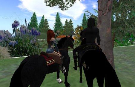 horses-again_010.jpg